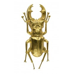 gold plated beetle brooch